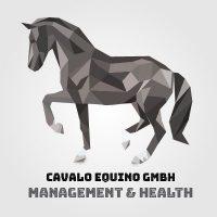 cavalo equino